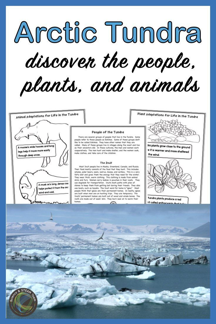 The Arctic Tundra The People, Animals, and Plants in