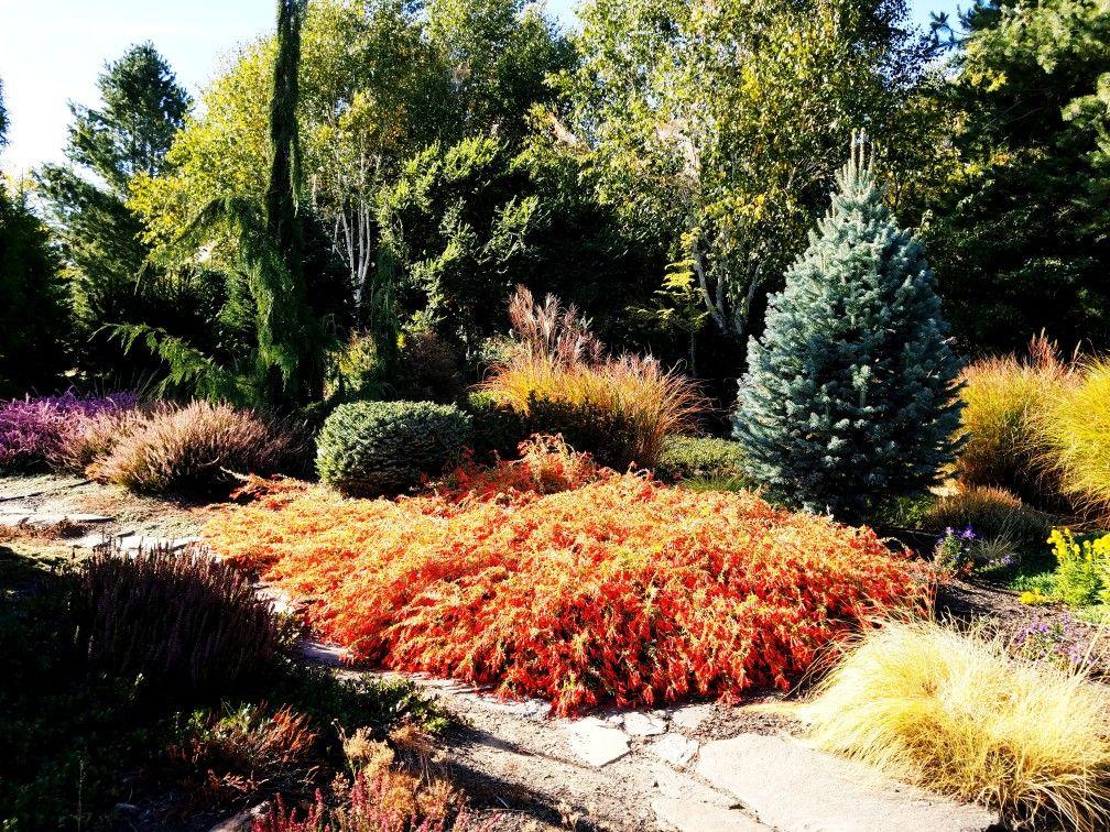 Fall In Yakima Wa Garden Garden Art Garden Plants