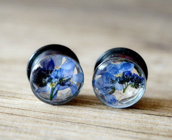 Flower Plugs Forget Me Not 9 16 14mm Ear Real Floral Gauges Tunne