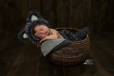 1e1fd78c5bb Newborn Baby Wolf Bonnet Hat and Tail Photo Prop Pattern by AMKCrochet.com