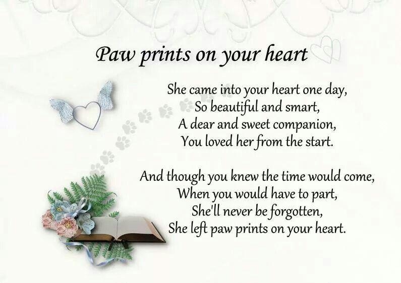 Afbeeldingsresultaat voor rip poem dog