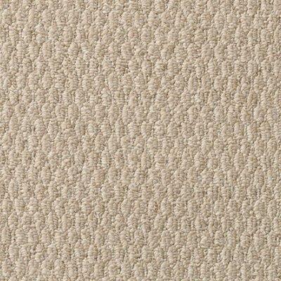 Mohawk True Style Shoreline Multi-Level Loop Pile Carpet 5 year stain and fade warranty 5 year abrasive wear warranty Construction Type: Multi-level