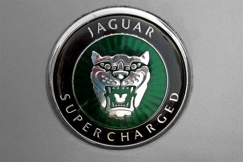 Jaguar Logo Jaguar Pinterest Jaguar Cars And Jaguar Xf