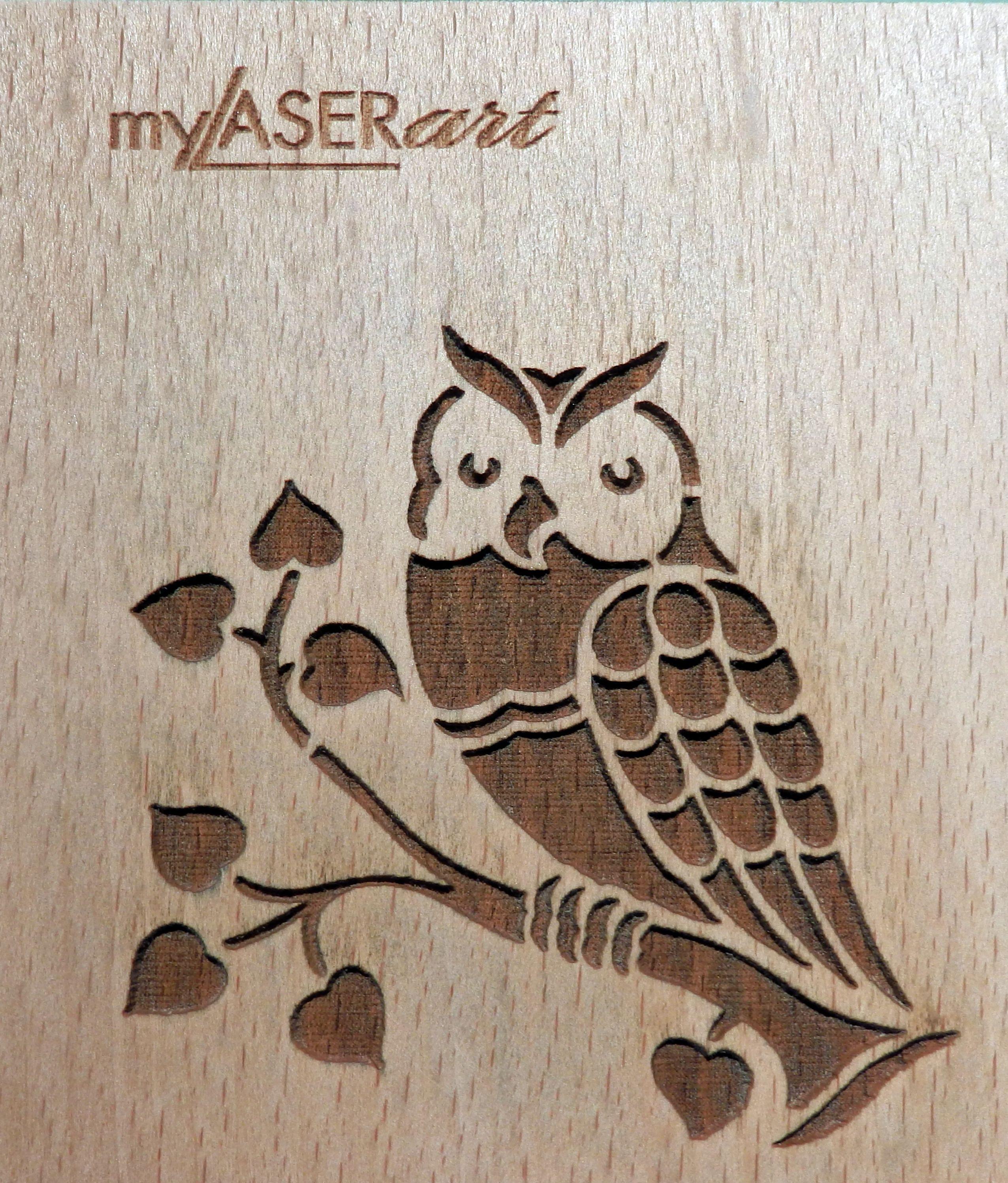 Eule Auf Ast Lasergravur Holz Lasergravur Basteln Mit