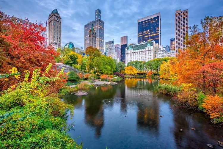 Autumn In New York: Try 7 Inviting Ideas For Travel Lovers — Forbes #autumninnewyork