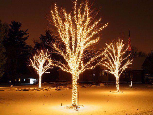 Photo of Alberi per illuminazione esterna dall'aspetto raffinato #outdoorlightingtrees # udendørsjulepynt Fin …