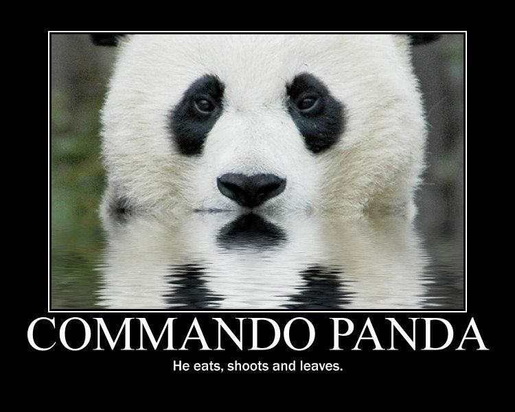 Commando panda he eats shoots and leaves punctuation reflections of black white sure makes a pretty picture alright not really a panda in water its just an effect like photoshop voltagebd Image collections