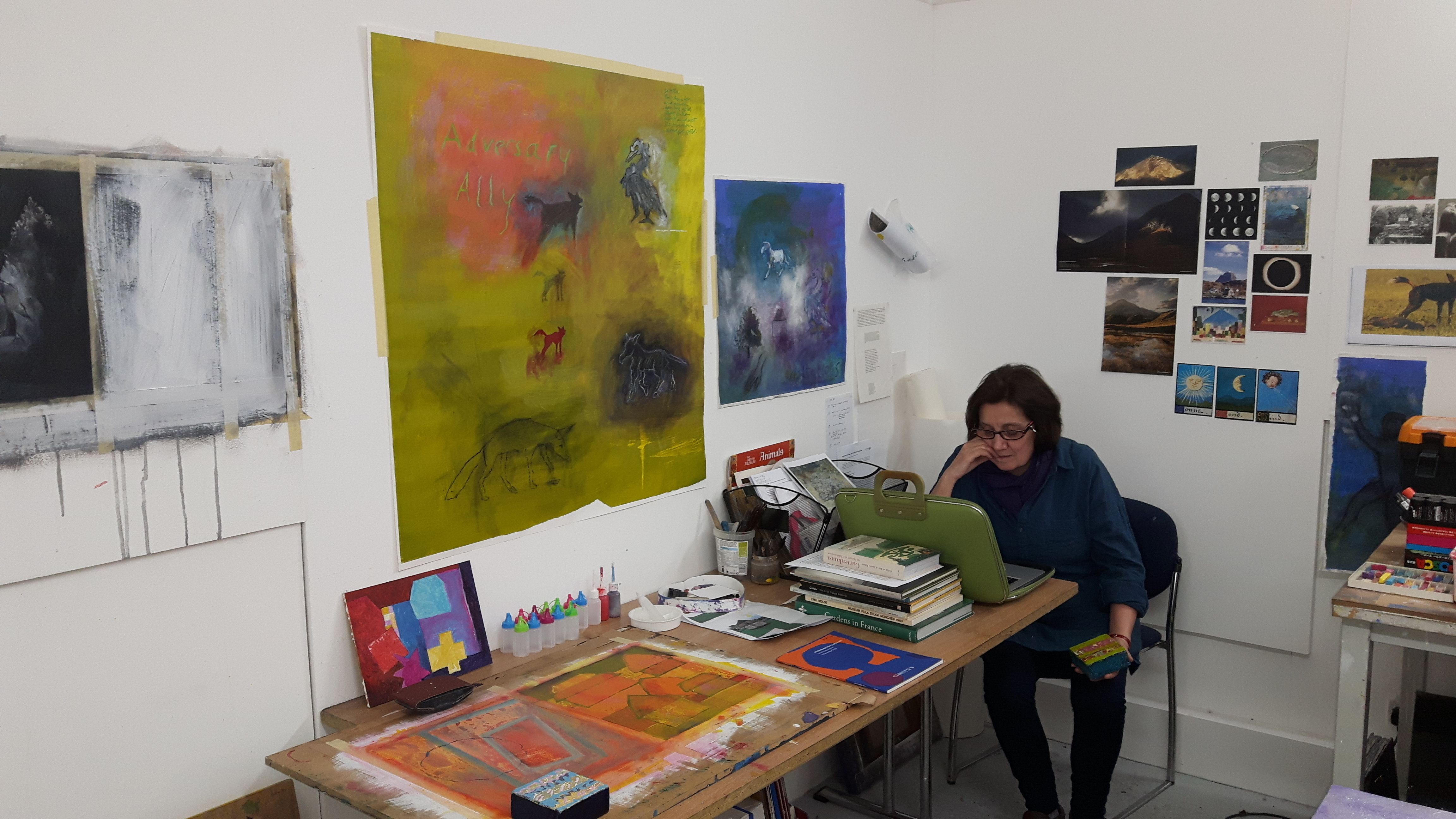 Deborah ravetz student visual arts mfa feb 2016 https