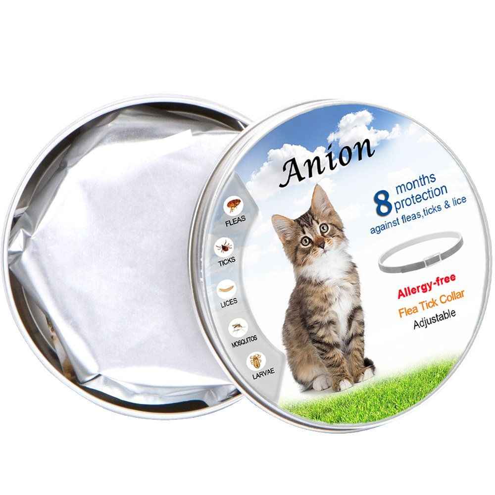 Anion Flea Tick Collar For Dogs And Cats Grey Repel And Prevent Fleas Pests Insectswater Resistant8 Month Protectionnew Version Cat Fleas Flea And Tick Fleas