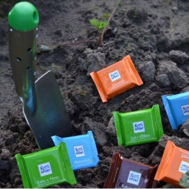 Pflanz dir deinen eigenen Baum aus #Schokolade