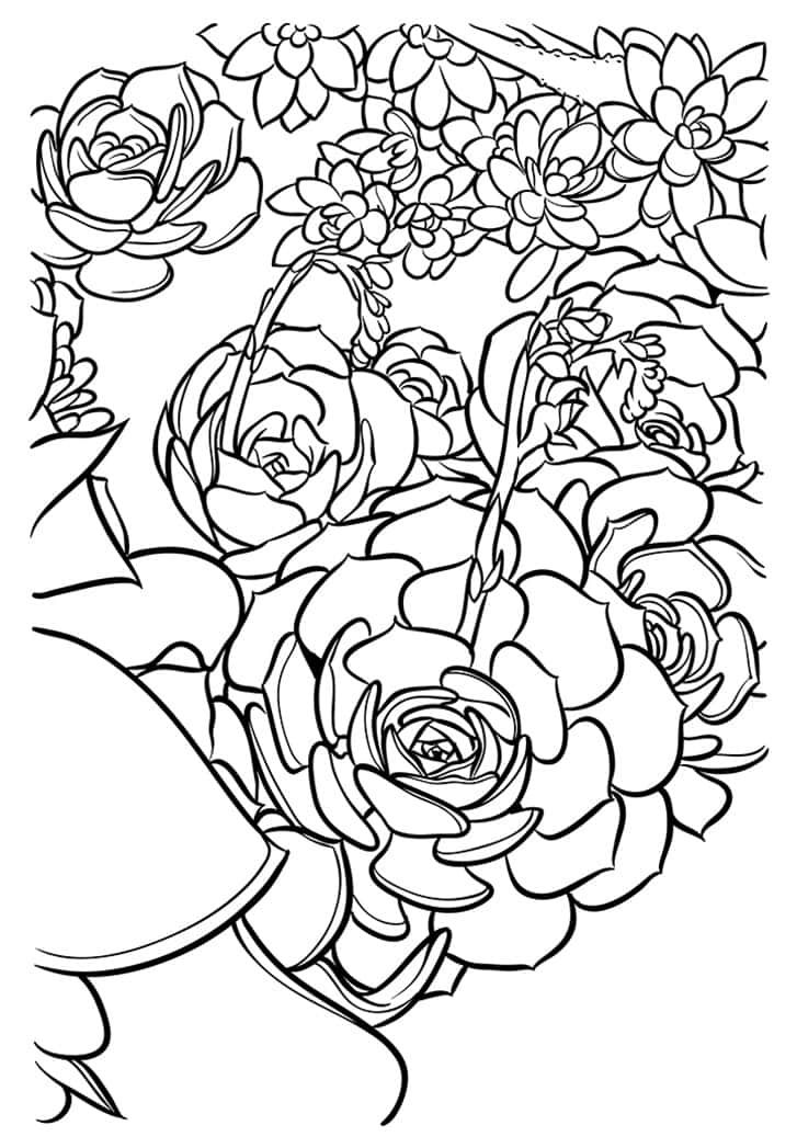 Versatile succulent cards you can print again and again ...