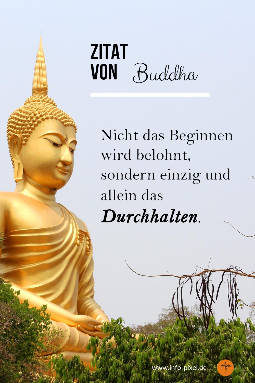 Buddha Zitate Für Tägliche Inspiration Lebensweisheiten Zum