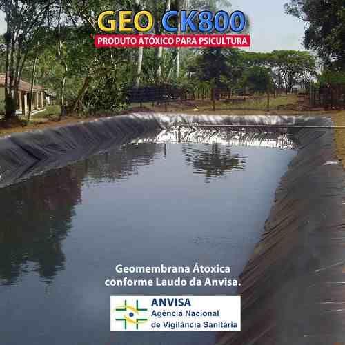 Lona geomembrana atoxica p tanque de peixe lagos 800 for Tanques para cria de tilapia