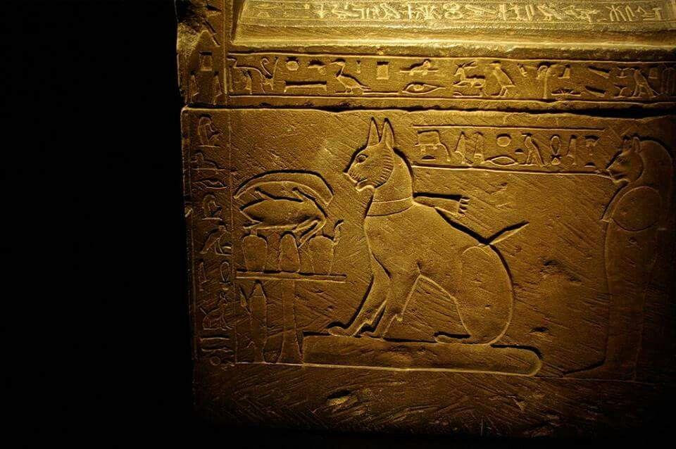 Cat's sarcophagus.
