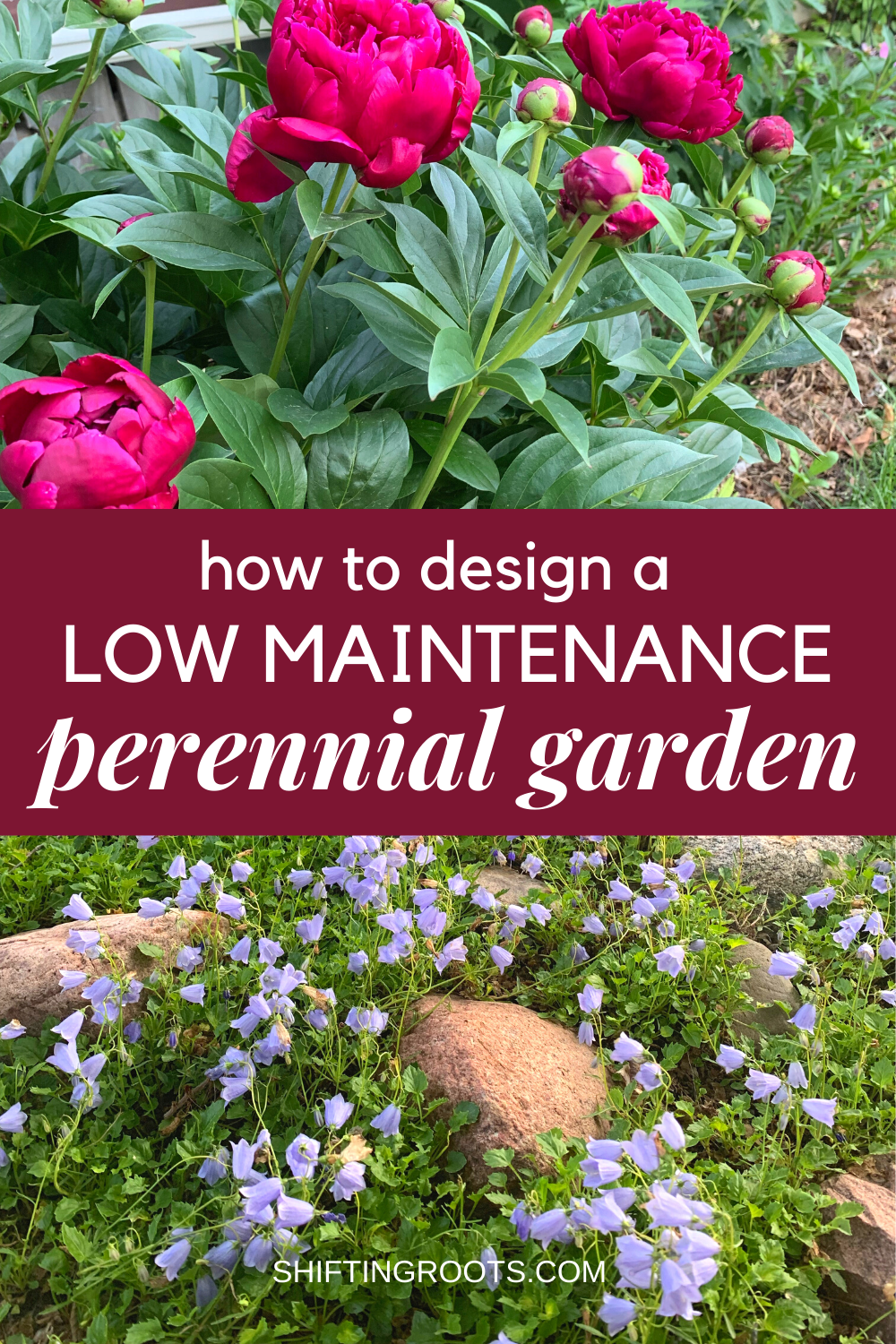 How To Design A Low Maintenance Perennial Flower Garden In 2020 Garden Flowers Perennials Flowers Perennials Best Perennials For Shade