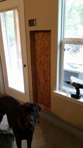 Automatic Dog Door Solo Pet Door Hole For Install Had To