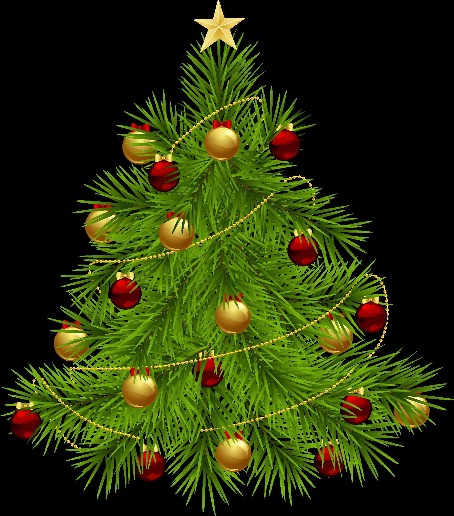 Christmas Tree Png Clipart Christmas Png Image Clipart Christmas Tree Without Ornaments Christmas Tree Clipart Christmas Tree Star
