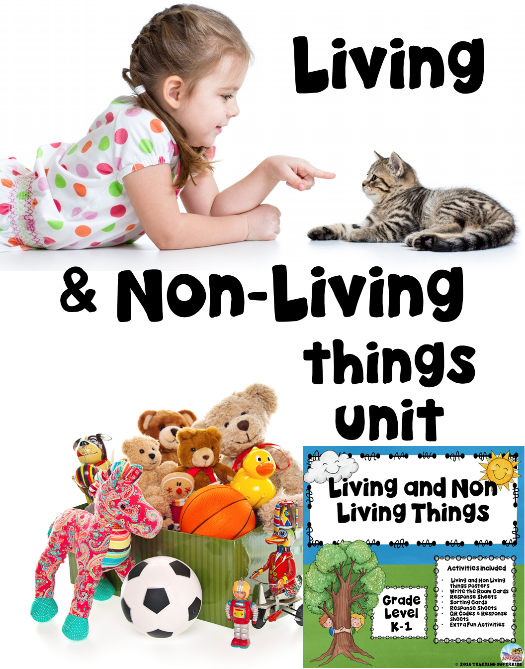 Living And Non Living Things With Images