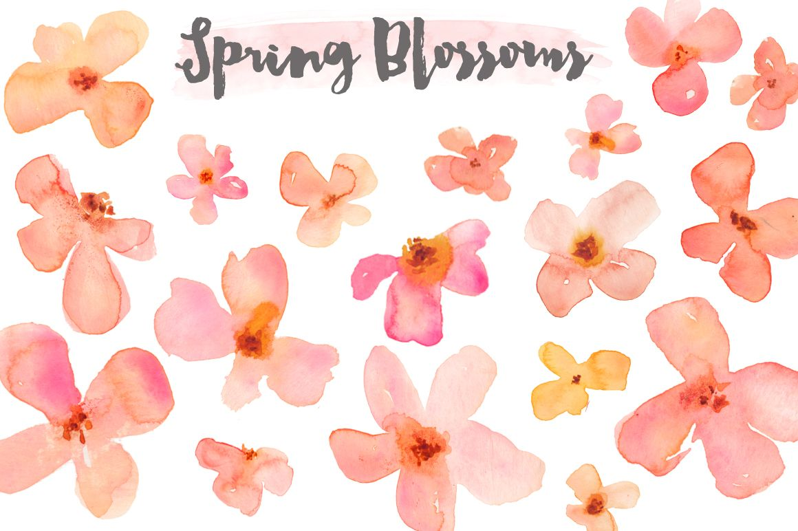 Watercolor flowers png clipart illustrations on creative market - Watercolor Clipart Flower Blossoms