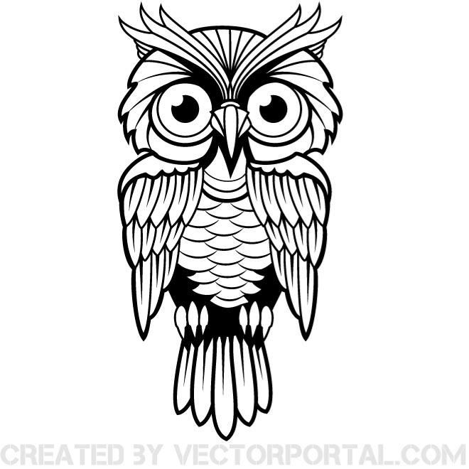 free vector illustration of an owl animal vectors