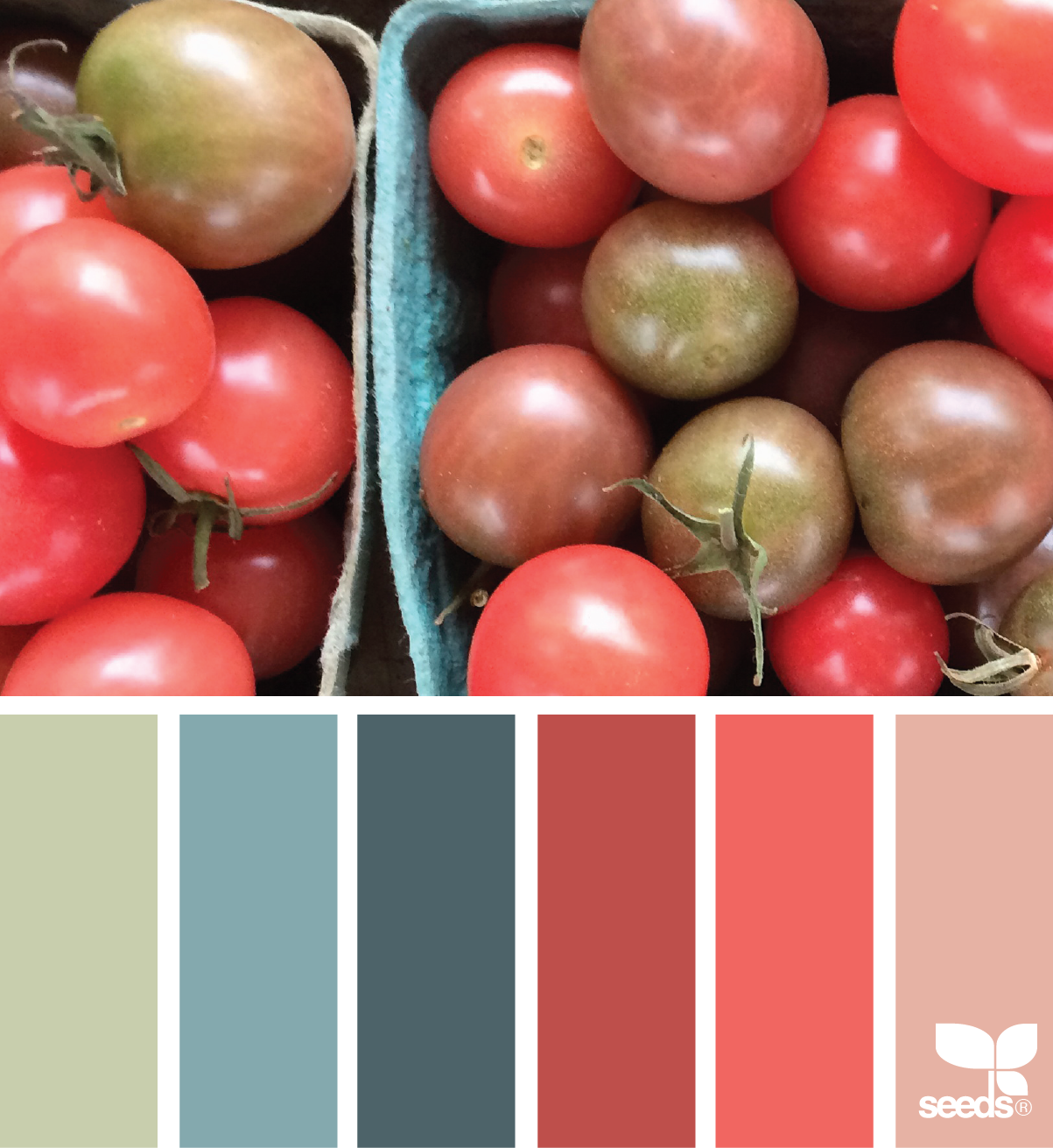 office colour schemes corporate office tomato hues office color schemescoral hues design seeds inspiration and pallets