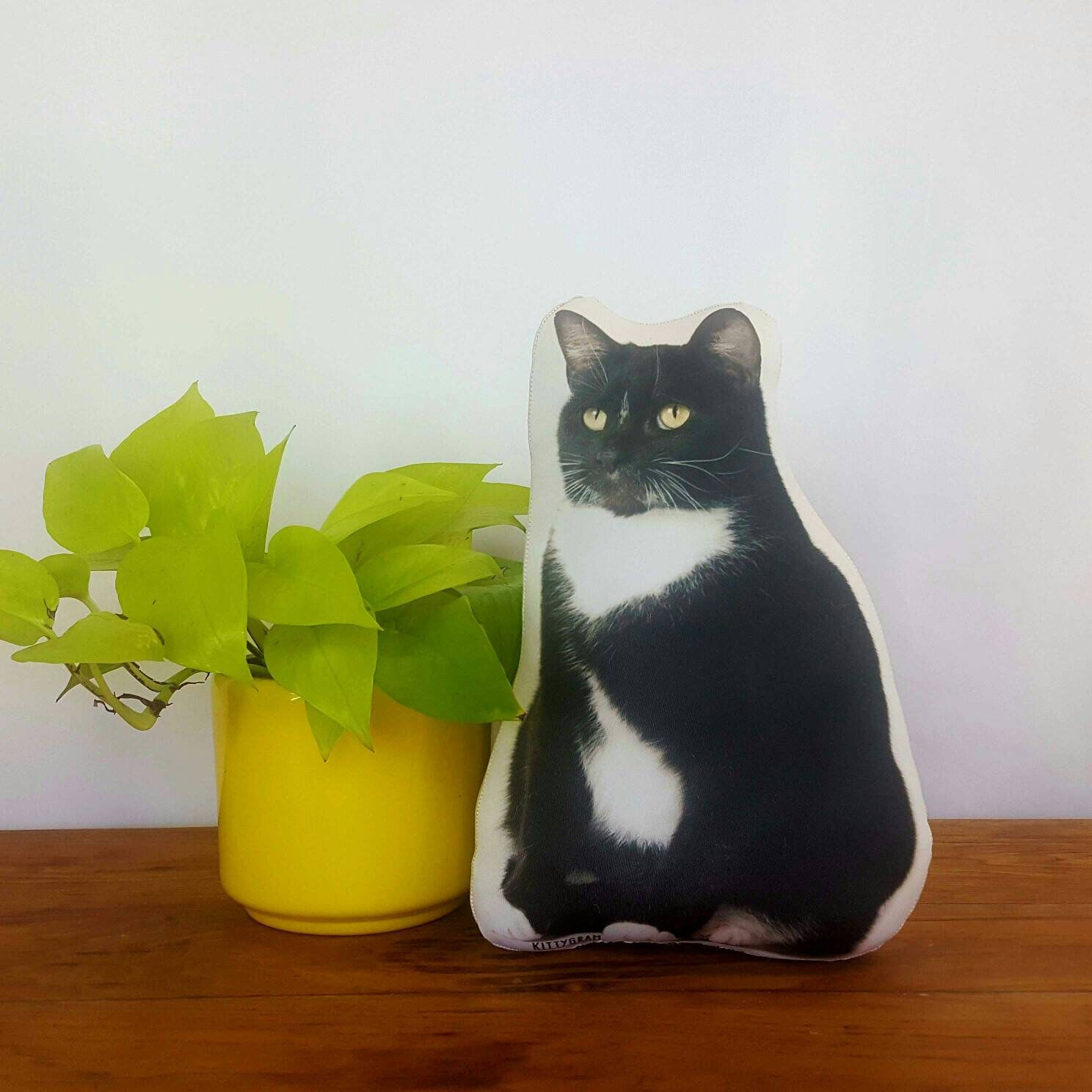 Tuxedo cat stuffed animal, cat photograph plush, cat