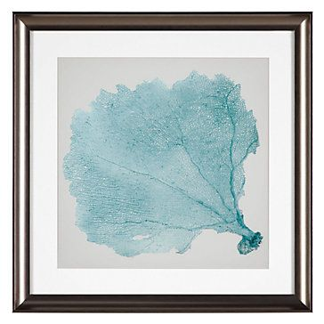 Sea Fan 5 Nature Botanical Art Themes Z Gallerie