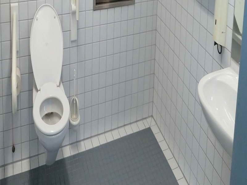 how to unblock a toilet using caustic soda