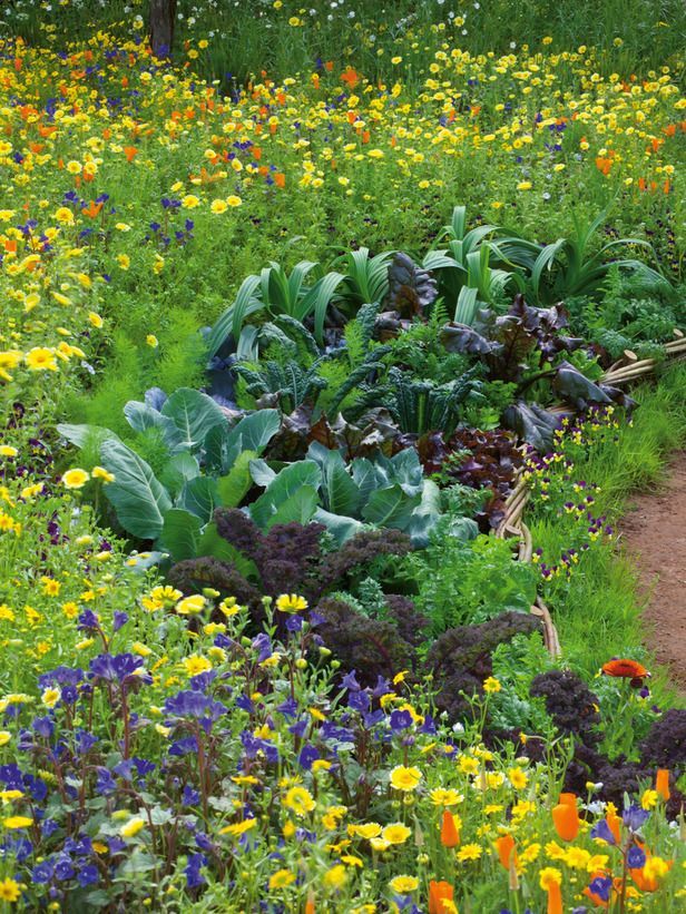 Pictures Of Vegetable Gardens With Flowers