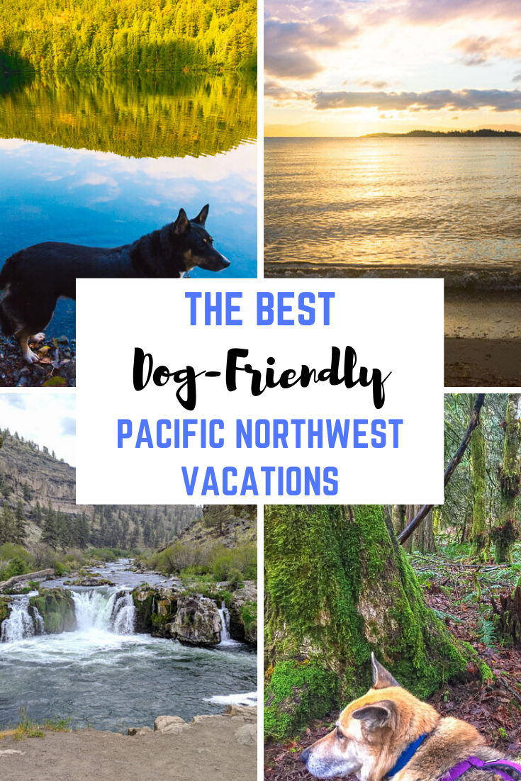 Best Dog-Friendly Vacations in the Pacific Northwest