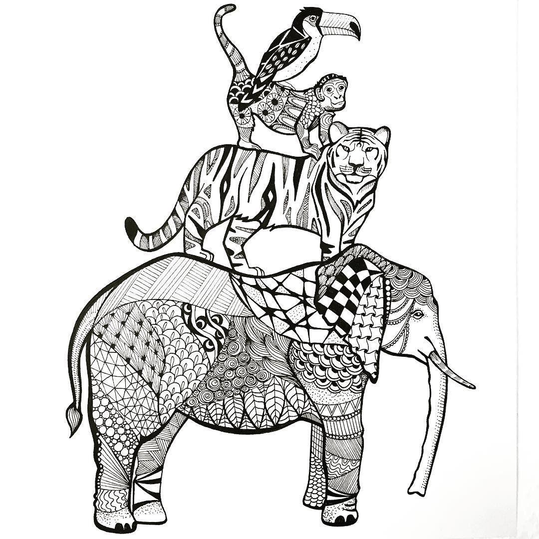 to the jungle!! 🌴🐘🐅🐒🐧🌱 Douzens of animal species