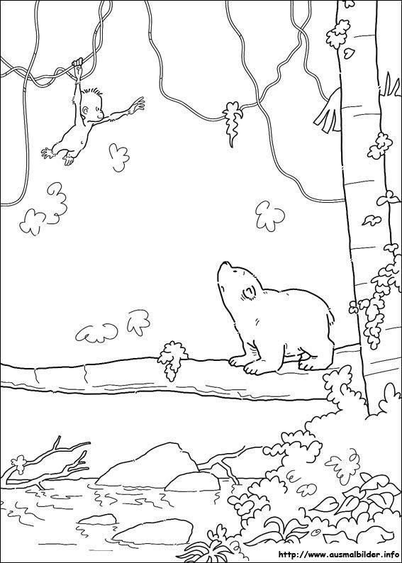 Der Kleine Eisbär Malvorlagen Coloring Pages Ausmalbilder