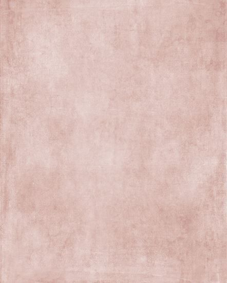 Venetian Plaster Blush Google Search Textured Carpet Painting