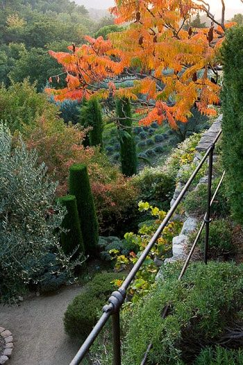 Nicole de Vesian's garden in Provence, photographed by Clive Nichols. 22