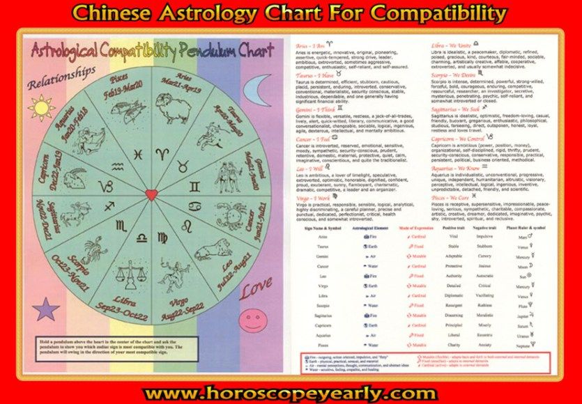 Compatibility Of Chinese Astrology Signs Every Relationship Is