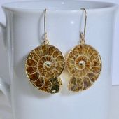 Ammonite Fossil Earrings on Handmade Gold Filled Earwires,#ammonite #earrings #e…