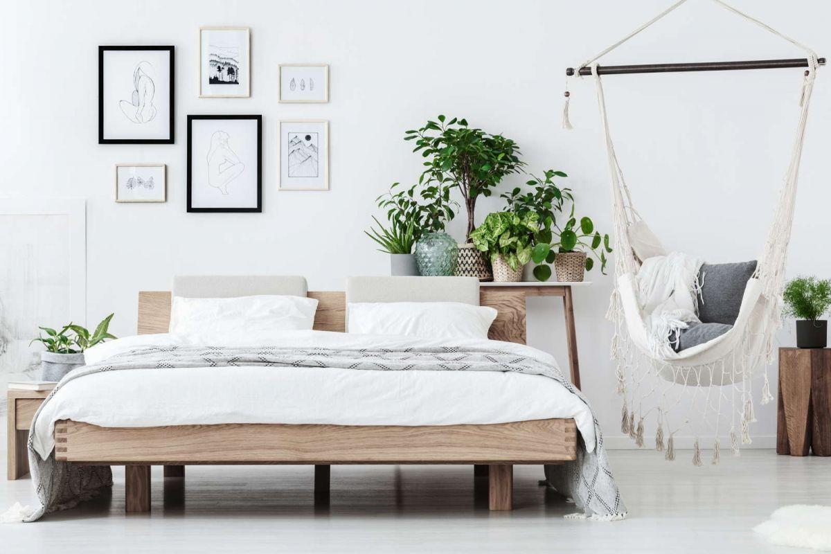 aloe vera schlafzimmer Ob-oder nicht Sie es oder jemand, der ...
