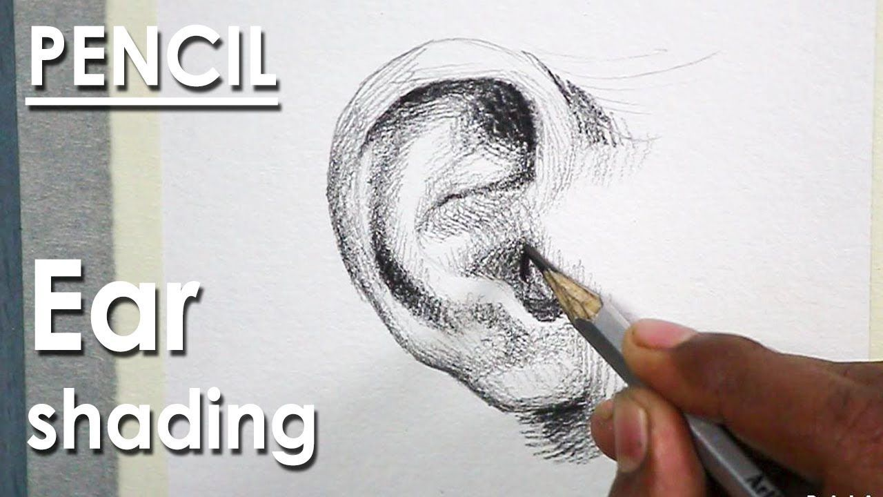 How to Draw A Realistic Ear in Pencil step by step ...