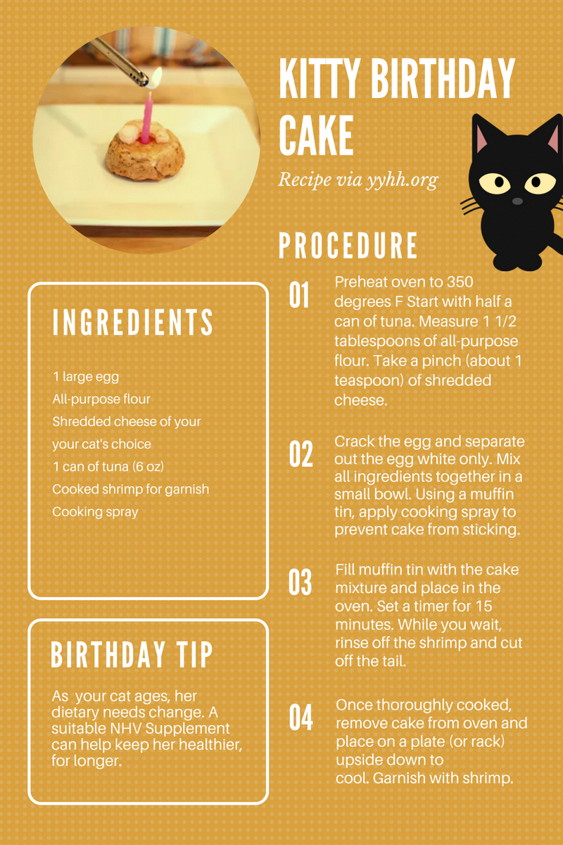Kitty Birthday Cake Recipe Make This Easy And Yummy For Cat On Her