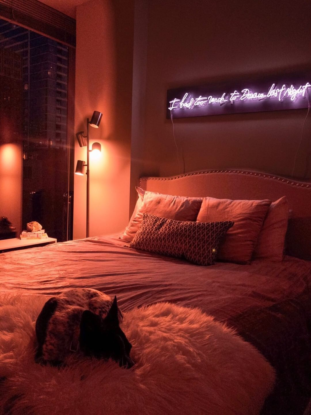 I had too much to dream last night Neon Sign Dreamy room