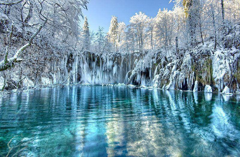 natuur nature