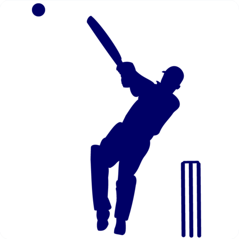 Image result for cricket clipart | WIS DigLit Malay Rungta ...