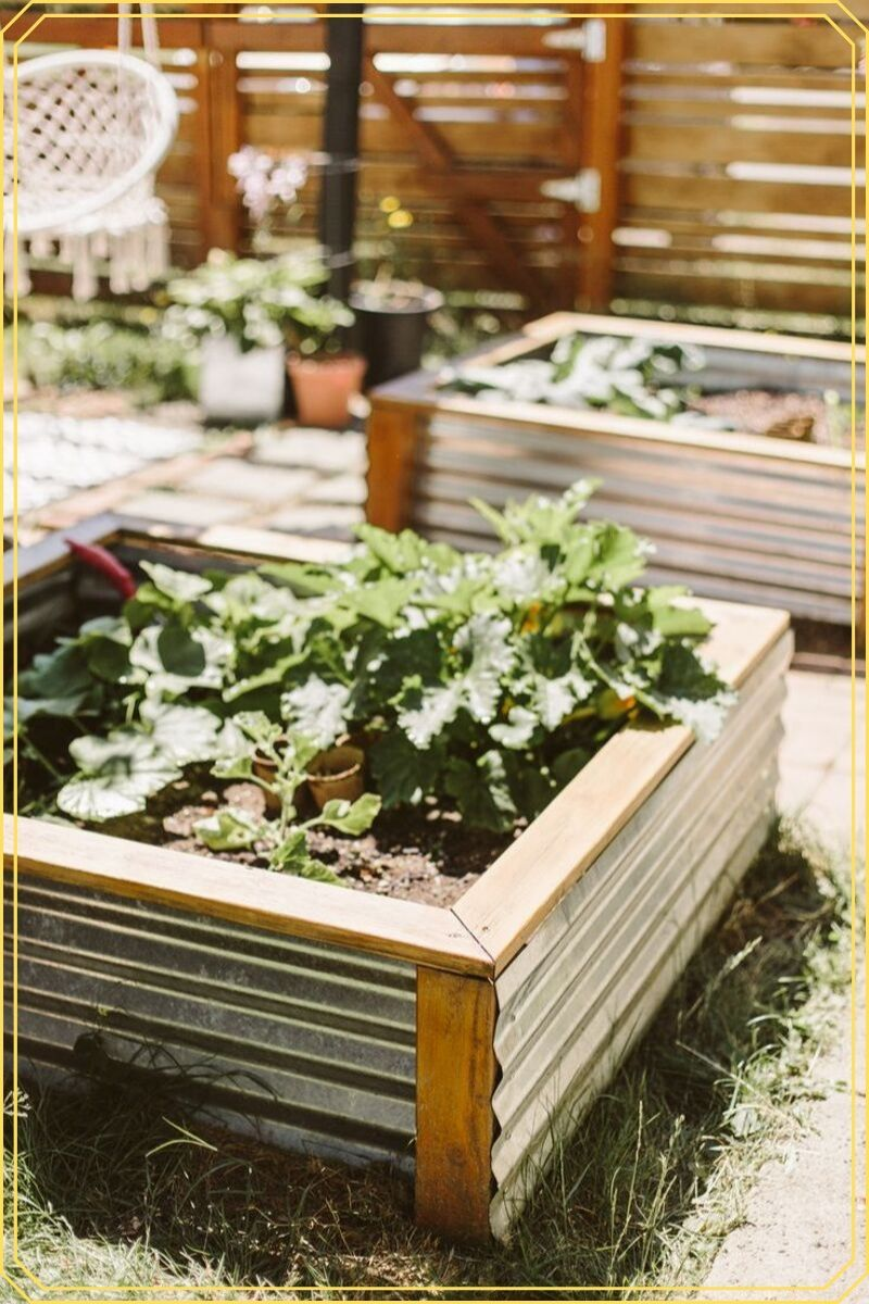 Raised Bed Garden Ideas (with easy tips and tricks