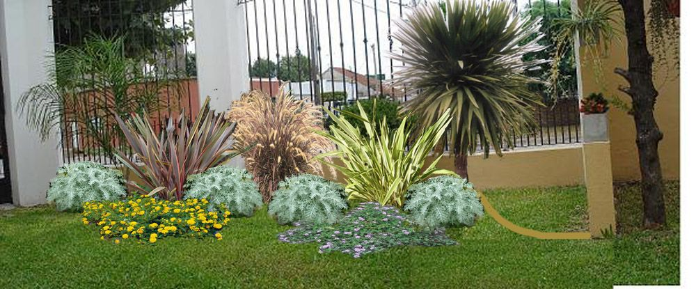 canteros a pleno sol - Buscar con Google Flores y jardines