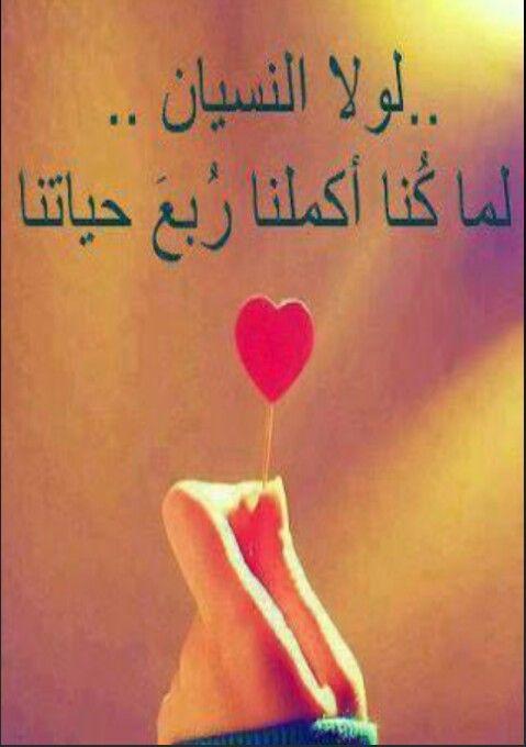 نعمة النسيان م ن ى Words Photo Arabic Quotes