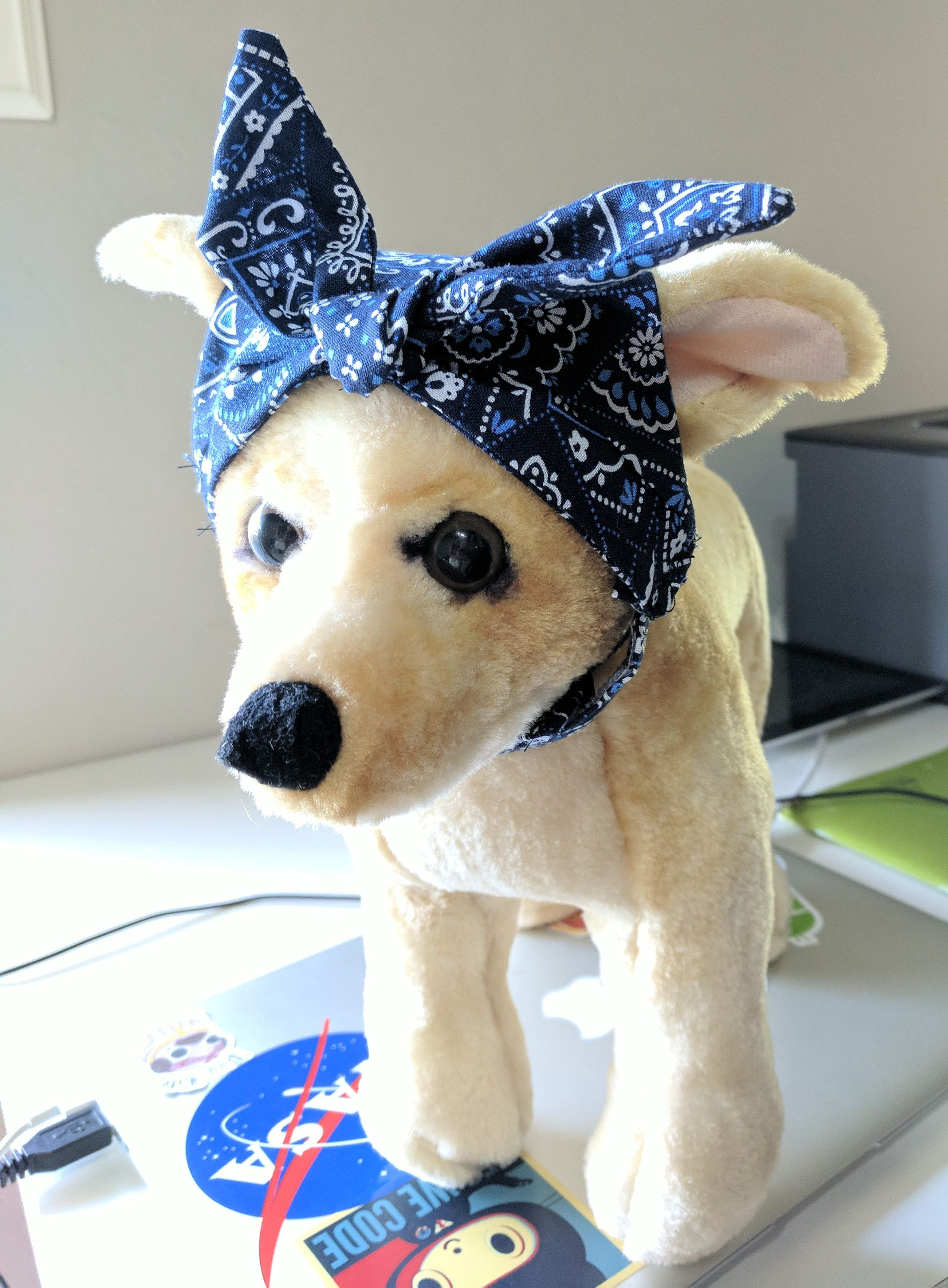 Pin by The Pawfit on Store Pet clothes, Dog weight, Cute