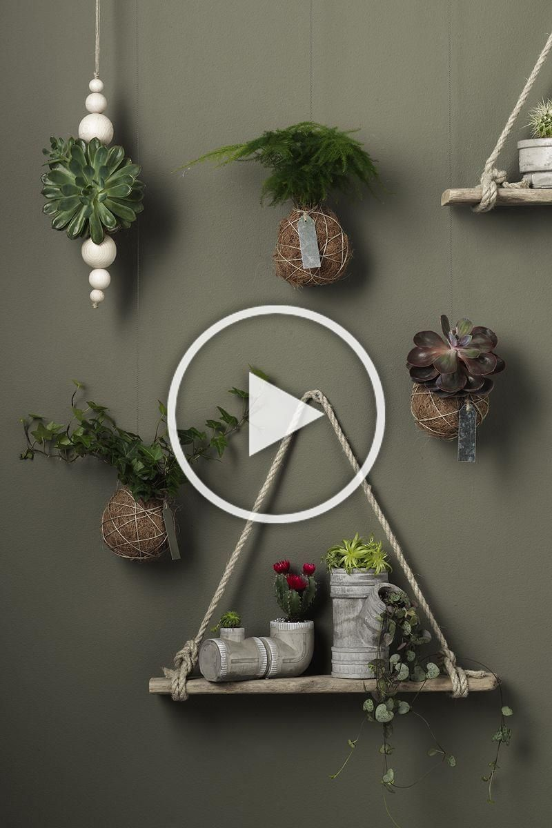 Kokedama www.panduro.com Home Decor by Panduro #DIY #tutorial #instructions #interior #flower #wood #furniturepaint #bets #varnish #stringgarden #mossball #kokedama #japansk #hanging garden