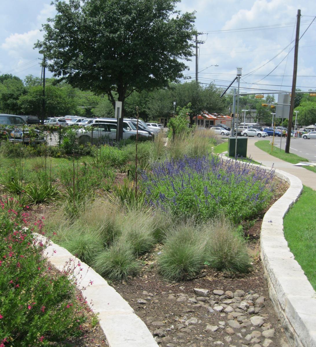 Read more about rain gardens on Imagine Austin blog