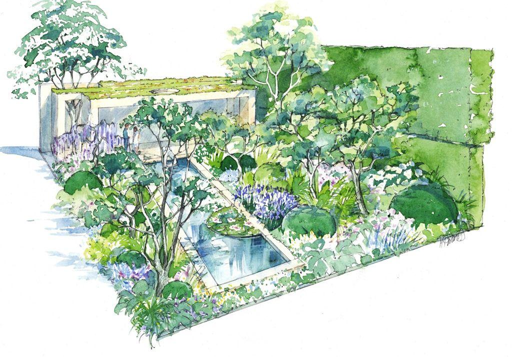 Morgan Stanley Garden Chelsea 16 illustration medres   RHS and ideas ...