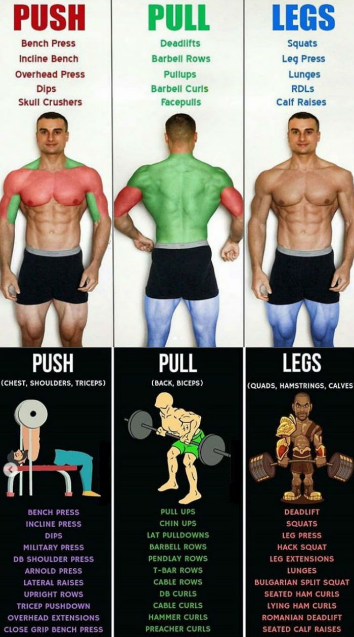 Push/Pull/Legs Weight Training Workout Schedule For 7 Days #routine